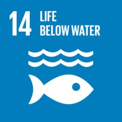 Global-Goals-14