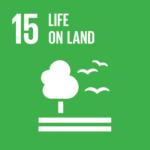 Global-Goals-15