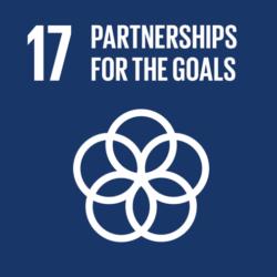 Global-Goals-17